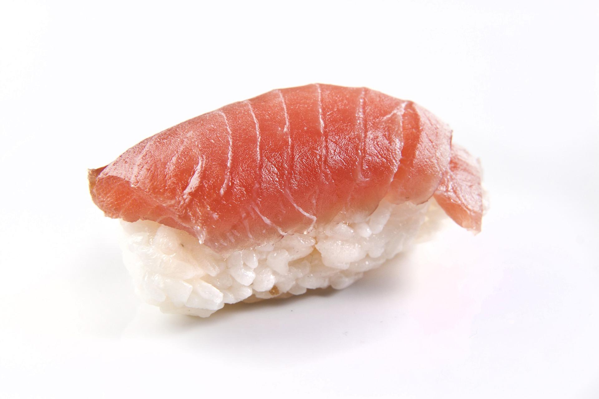 salmon-716430_1920